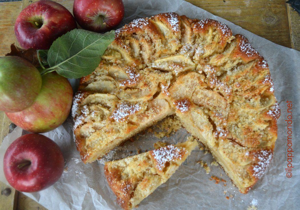 torta_mele_frullate_1