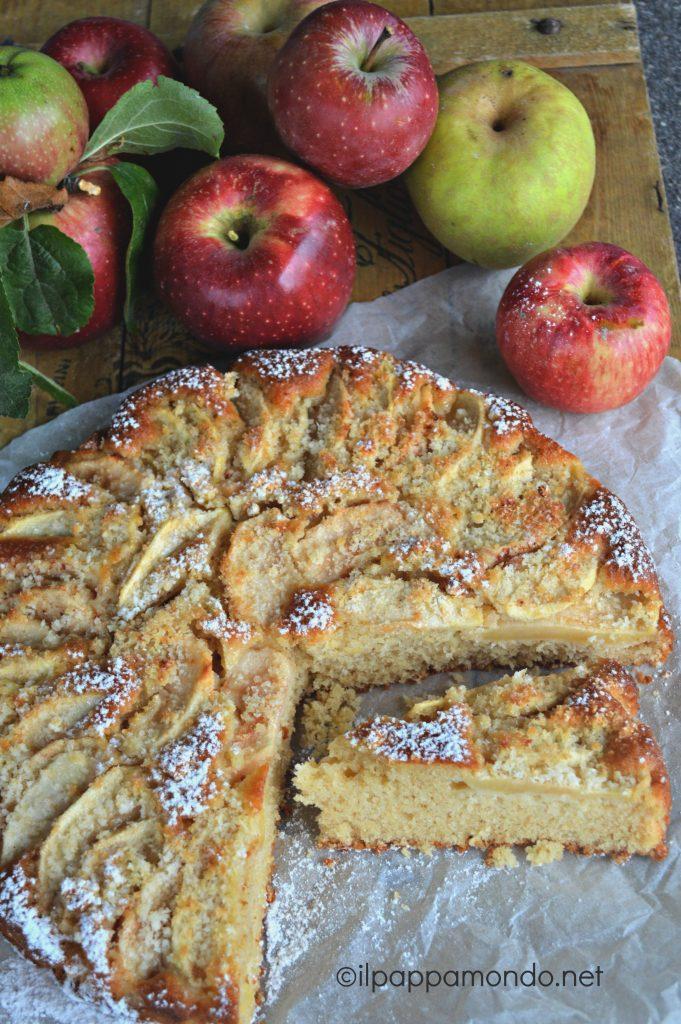torta_mele_frullate_5
